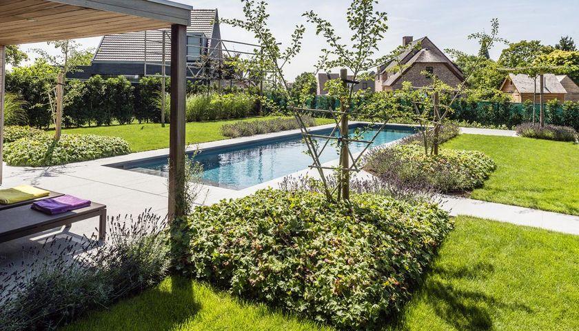Onderhoudsvriendelijke Tuin Zwembad : Integratie zwembad in ondiepe achtertuin realisaties